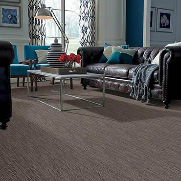 Anso® Nylon Carpet | Madison, NJ